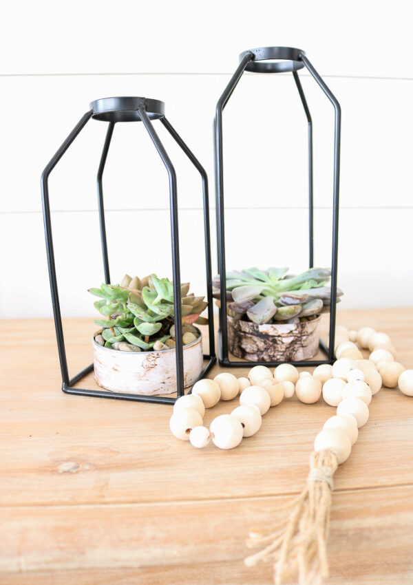 Easy Faux Birch Succulents