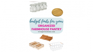 Best Budget Items For An Organized Pantry