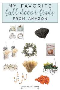 Best fall home decor from Amazon on a budget! #falldecor #fallaesthetic