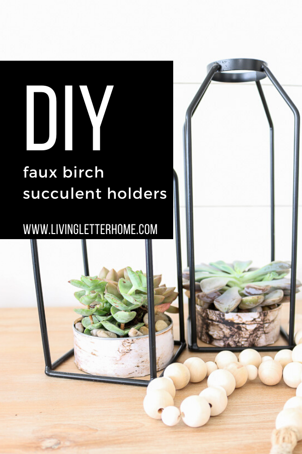 You won't believe how she made these cute faux birch pots for her succulents! SO EASY AND GENIUS!