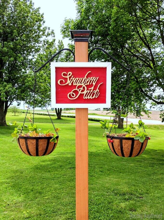 free-standing-strawberry-garden