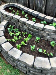 paver raised garden bed