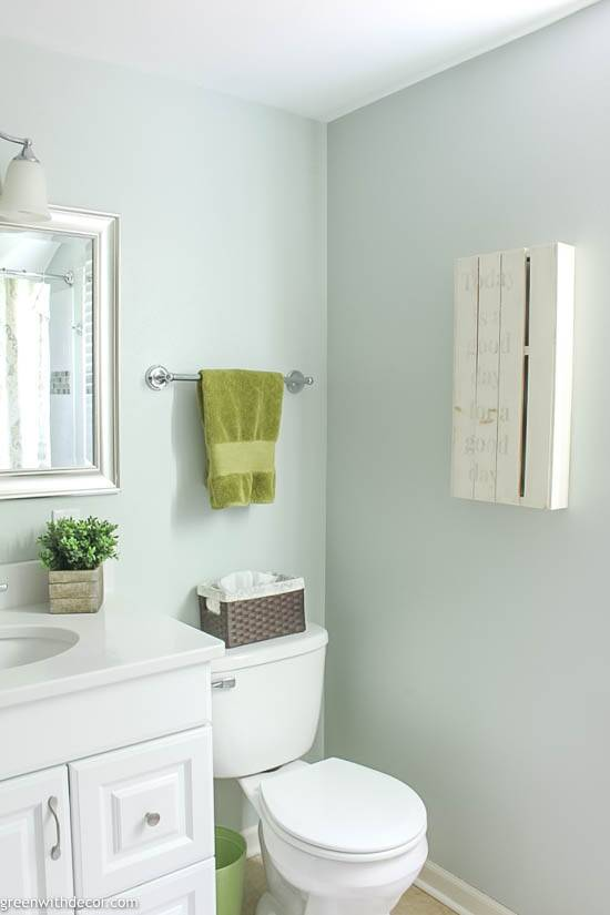 White vanity and toilet with Sherwin Williams Sea Salt on the walls