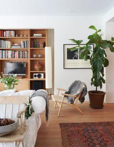 Japandi style designed living room with large plant
