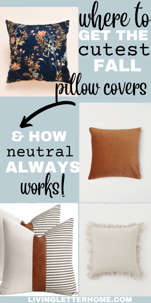 10 fall pillow cover pin graphic