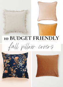 Fall pillow covers graphic featured image